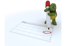 http://www.dreamstime.com/royalty-free-stock-photos-tortoise-calendar-image22938028